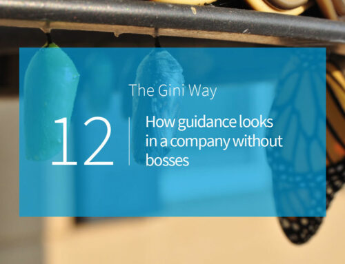 How guidance looks in a company without bosses